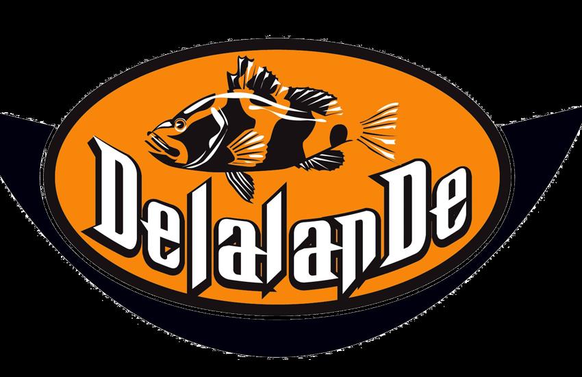 logo-delalande2007-850x551
